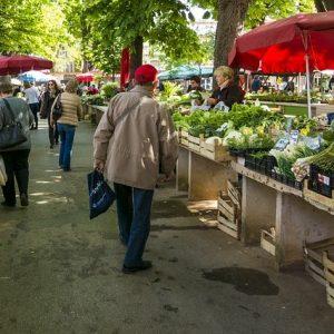local farmers market - reduce food waste