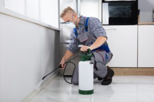toilet-facilities-cleaning-inspection